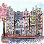 bloesem amsterdamse gracht