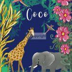 Geboortekaartje Coco