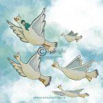 Geboortekaartje vogels